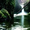 nature-09.jpg