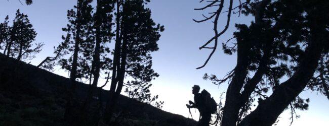 Joe on the trail at treeline